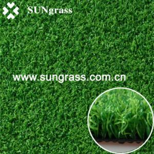 High Density Artificial Grass for Hockey Field (PA-1500) pictures & photos