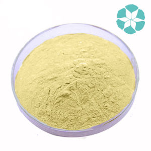 Garlic Extract / Allium Sativum Extract / Allicin pictures & photos