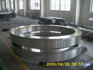 AISI304 Stainless Steel Forging Ring pictures & photos