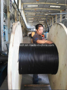 All Dielectric Self-Supporting Optical Cable / ADSS Cables12 Fibers ISO Certification pictures & photos