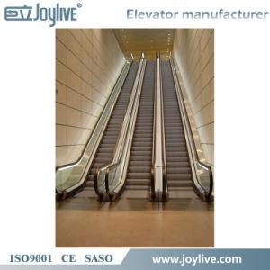 Moving Sidewalk Passenger Lift Moving Walk Elevator pictures & photos