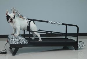 HD-900 Low Price Good Quality Pet Treadmills/Dog Pacer pictures & photos