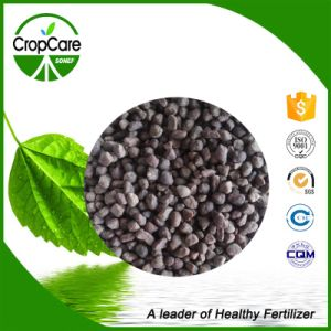 High Quality Slow Release Organic Fertilizer pictures & photos