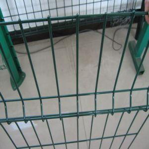 Vinyl Coated Welded Wire Mesh Fence for Sale pictures & photos