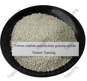 Ferrous Sulphate Monohydrate Middle Granular Fe30% pictures & photos