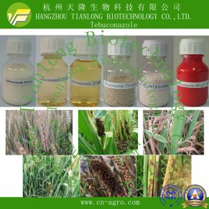Highly Effective Fungicide Tebuconazole (95%TC, 80%WP, 80%WDG, 25%WDG, 25%EC, 430g/lSC, 60 g/l FS, 25%EW, 12%CS, 12%ME) pictures & photos