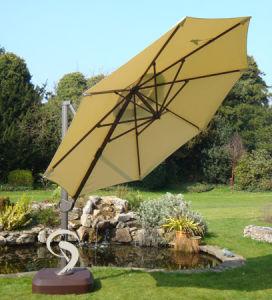 Umbrella (Scd-1016)