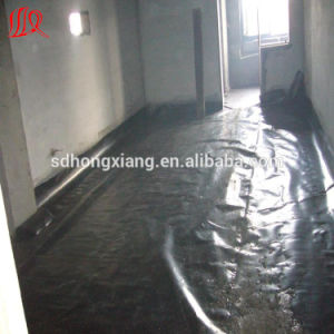 ASTM Standard HDPE Geomembrane pictures & photos