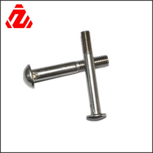 Stainless Steel Round Combination Bolts/Removable Bolts pictures & photos
