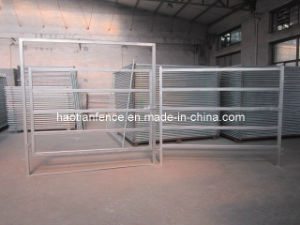 1.8X2.1m Hot Dipped Galvanized Cattle Panel pictures & photos