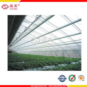 Hot Sale Hollow Lexan Polycarbonate Greenhouse Panels pictures & photos
