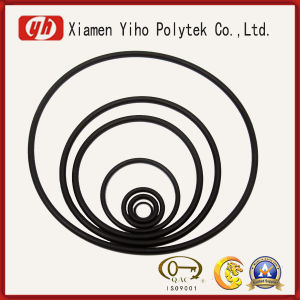 Factory Supply Customized O Ring pictures & photos