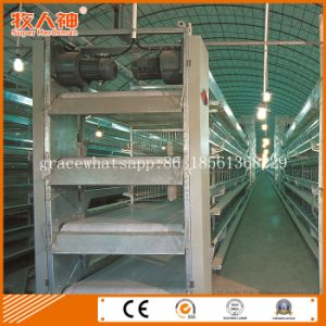 Automatic Layers Poultry Cages with Prefab Shed and Turn- Key Service pictures & photos