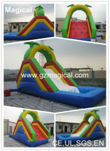 Commercial Kids PVC Inflatable Slide with Water Pool (MIC-906) pictures & photos