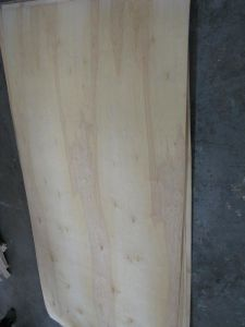 Birch Plywood 13 pictures & photos