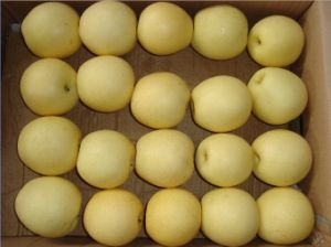 Crown Pear, Huangguan Pear/Chinese Fruits of High Quality pictures & photos
