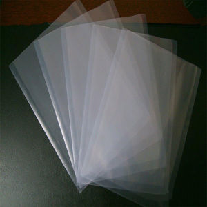ISO 9001 Vacuum Bags for Frozen Food Packaging (HK-VB5501) pictures & photos