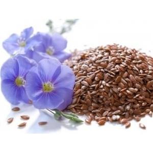 Organic Linseed Flax Seed