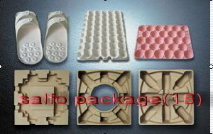 Pulp Molding Package