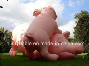 Beautiful Outdoor Inflatable Exhibitions /Inflatable Art Design/City Architecture/Event Decoration/Inflatable Pig