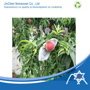 UV Treated Nonwoven Bag for Fruit Cover pictures & photos