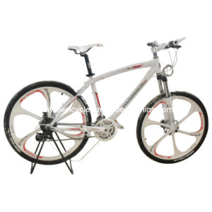 MTB Bike (WT-2656) pictures & photos