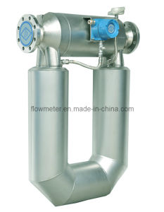 Mass Flow Meter-P100 for Measuring Liquids (Water, Fuel, Rude Oil, Gasoline, Diesel, Solvent, Slurry) and Gas