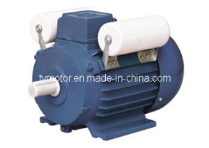 YL Induction Motor pictures & photos