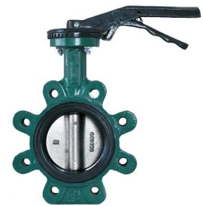 Lug Type Butterfly Valve pictures & photos