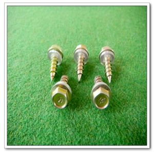 Hex Head Self Drilling Screw (DIN7504 (4.8*25))