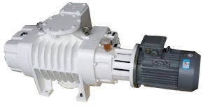 Roots Vacuum Pump pictures & photos