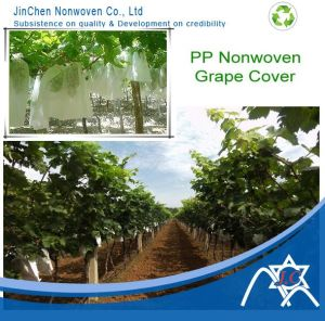 PP Spunbond Non-Woven for Fruit Cover, Grape Cover pictures & photos