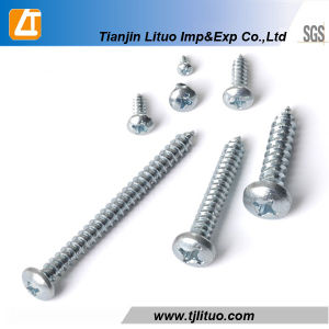 DIN7981 Philips Drive Pan Head Tapping Screws pictures & photos