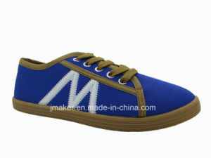 2016 Fashion Casual Footwear for Lady (XH05-L)