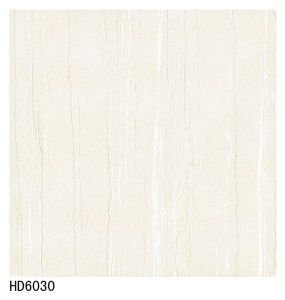 Foshan Tiles 60X60 Soluble Salt Cheap Floor Tiles pictures & photos