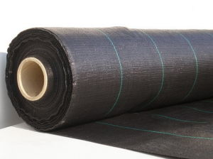 PP Multi-Filament Woven Geotextiles pictures & photos