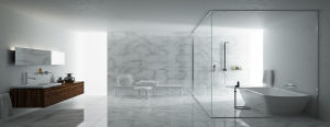Shower Enclosures Tempered Glass Frameless Glass Shower pictures & photos