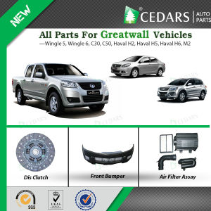 10 Years Experience Wholesaler for Great Wall Auto Spare Parts pictures & photos