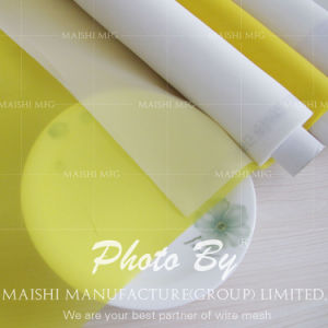 Monofilament Screen Printing Mesh pictures & photos