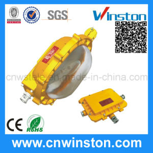 Anti Explosion Proof Metal Halide Flood Light with CE pictures & photos