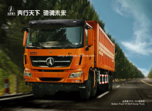 North Benz 8X4 Dump Truck pictures & photos