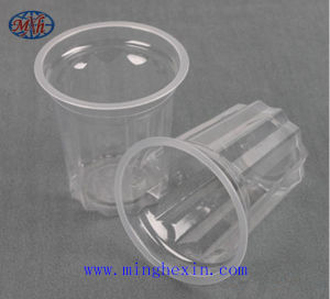 Transparent Disposable Plastic Cups with ISO SGS