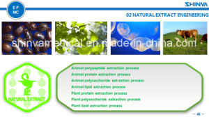 Shinva Herbal and Nature Extraction System