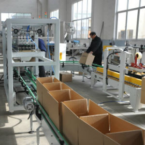 Automatic Carton Erector Packing Machine for Bottles (WD-ZX15) pictures & photos