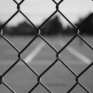 Zhuoda PVC Coated Galvanized Chain Link Fence pictures & photos