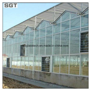 Toughened Glass Green House Glass pictures & photos