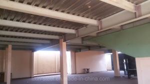 Prefabricated Steel Structure Multi-Floor Metal Frame Building with Curtain Wall pictures & photos