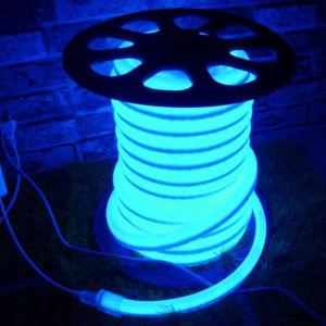 LED Rope Light in Green Color (12V/24V/110V/220V) pictures & photos