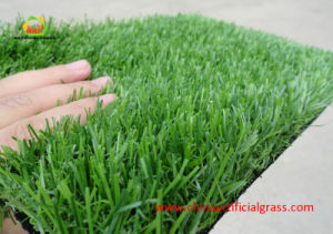 Multi Color Artificial Grass for The Decoration of Leisure Places pictures & photos