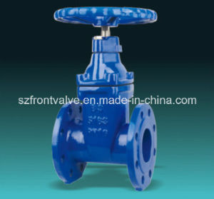 BS5163 Resilient Seated Ductile Iron Gate Valve pictures & photos